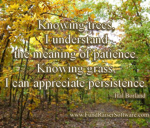 Patience and persistence of Nature as a model